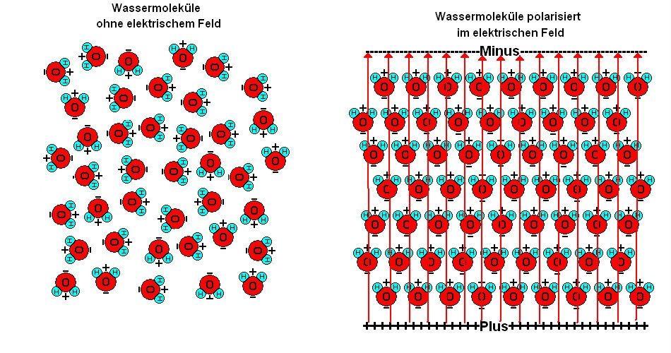 Polarisation von Wassermolekülen